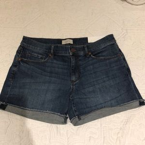 Loft NWT Denim Shorts